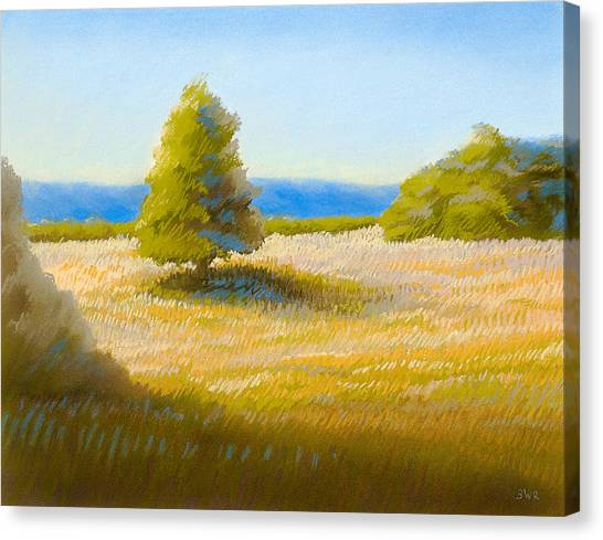 Summer Field Canvas Print by Bruce Richardson