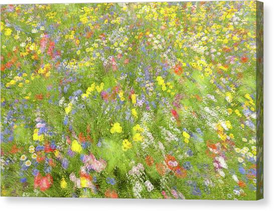Summer Field Flowers.......... Canvas Print by Piet Haaksma