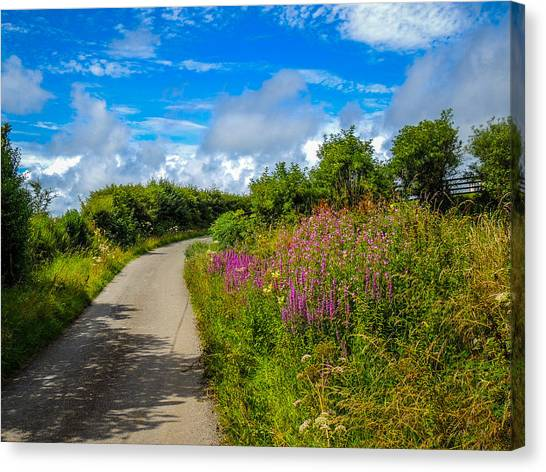 Summer Flowers On Irish Country Road Canvas Print