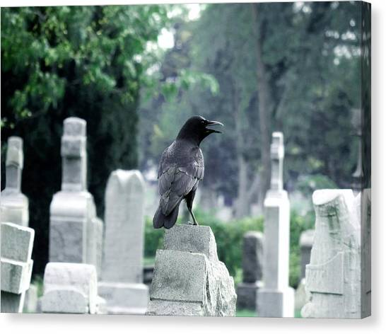 Ravens In Graveyard Canvas Print - Summer Graveyard by Gothicrow Images