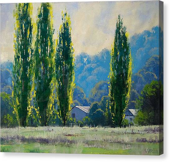 Gum Trees Canvas Print - Summer Greens by Graham Gercken