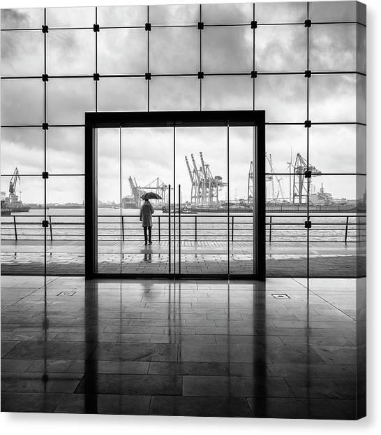 Cranes Canvas Print - Summer In Hamburg by Alexander Sch?nberg