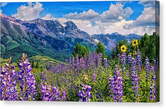 Summer In Telluride Canvas Print