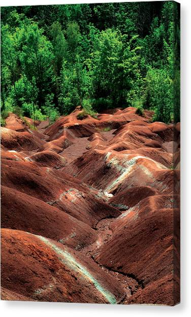 Summer Moguls Canvas Print by Mike Feraco