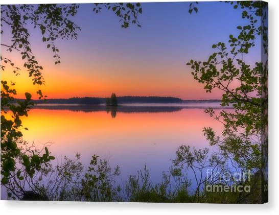 Foggy Forests Canvas Print - Summer Morning At 02.05 by Veikko Suikkanen