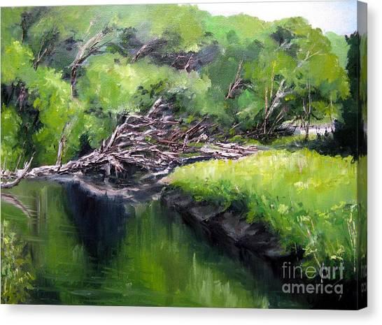 Summer Reflection Canvas Print