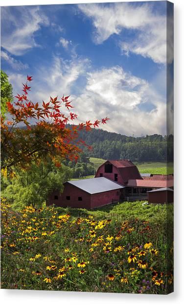 Murphy Canvas Print - Summer Skies by Debra and Dave Vanderlaan