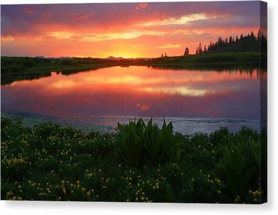 Summer Sunset Above Lake Creek. Canvas Print