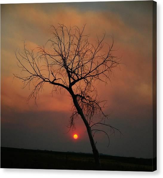 Summer Sunset Canvas Print