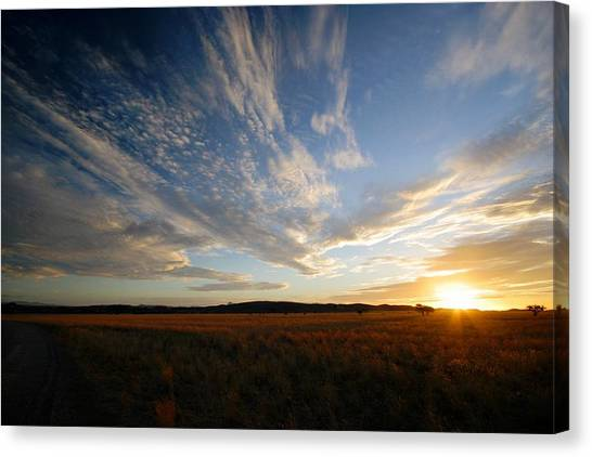 Summer Sunset Over Africa Canvas Print