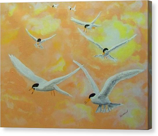 Summer Terns Canvas Print by Rich Mason