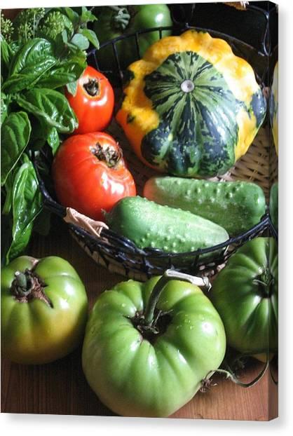 Summer Vegetable Garden  Canvas Print