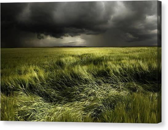 Thunderstorms Canvas Print - Summer Weather by Franz Schumacher