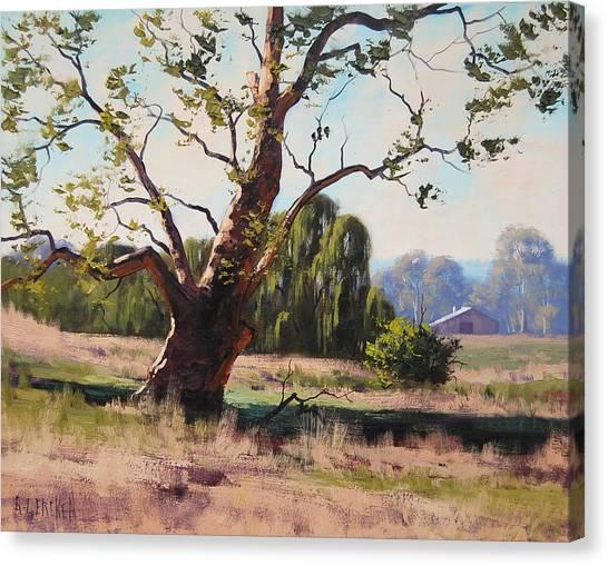 Homestead Canvas Print - Summer Willow by Graham Gercken