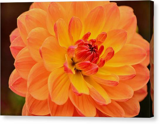 Summer's End Canvas Print by Kathi Isserman