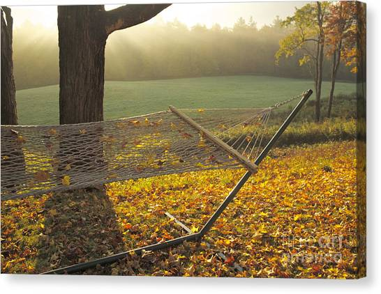 Summer's Repose Canvas Print