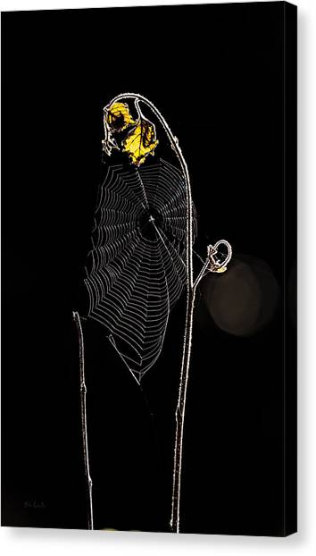 Spider Web Canvas Print - Summers Web Before Sunrise by Bob Orsillo