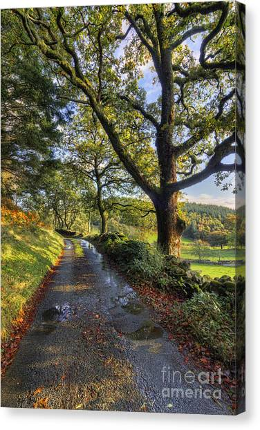 Sun After The Rain Canvas Print