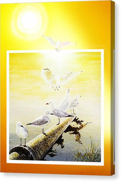 Sun Birds Canvas Print