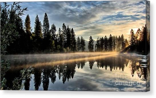 Sun Blessed Pond Canvas Print