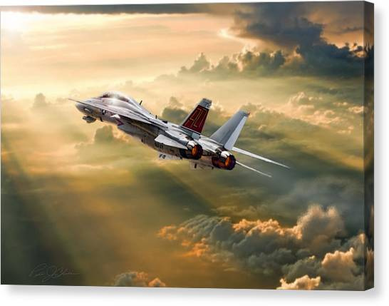 Diamondbacks Canvas Print - Sun Catcher Tomcat by Peter Chilelli