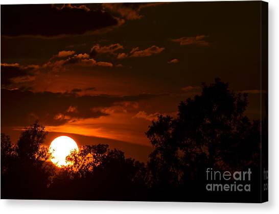 Sun Cradle... Canvas Print