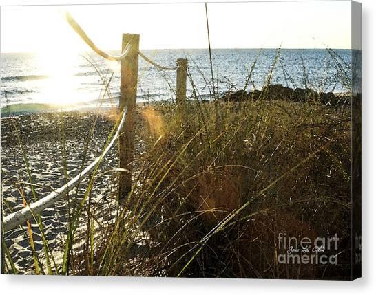 Sun Glared Grassy Beach Posts Canvas Print