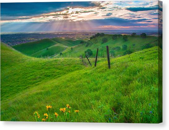 Contra Canvas Print - Sun Rays And Green Hillside by Marc Crumpler