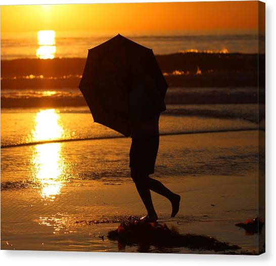 Sun Shield Canvas Print