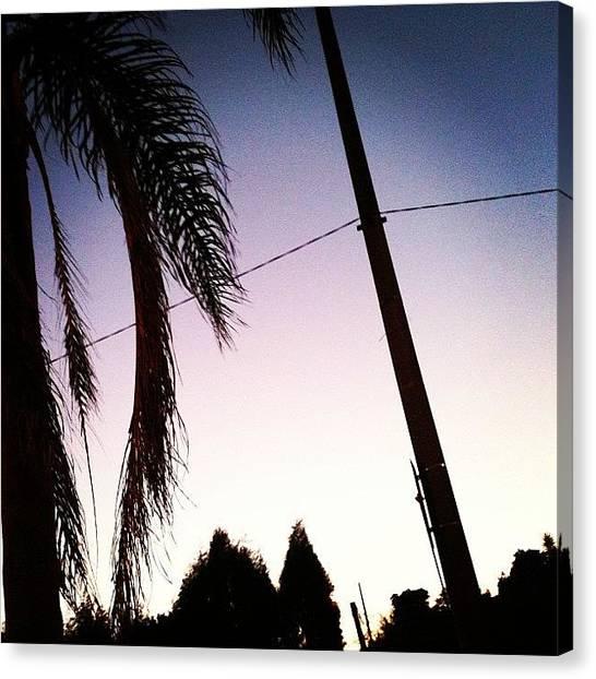 Sunrise Horizon Canvas Print - #sun #sunrise #sunshine #sky #day #tree by Rodrigo Moraes