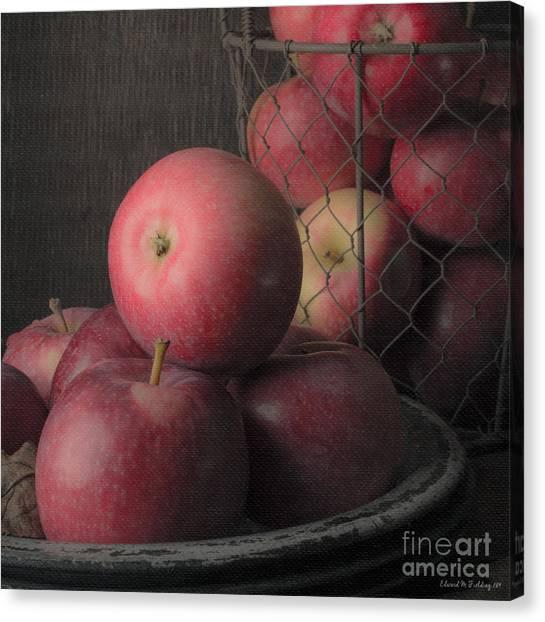 Aspect Canvas Print - Sun Warmed Apples Still Life Square by Edward Fielding