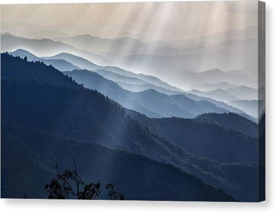 Sunbeams 01 Canvas Print