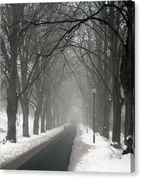 Sunday Afternoon Winter Canvas Print
