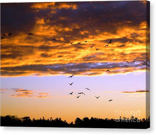 Gods Outdoor Church Sunday Canvas Print