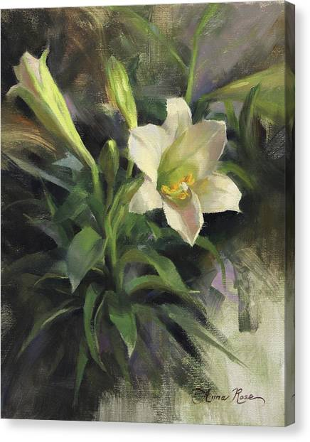 Lilies Canvas Print - Sunday's Lily by Anna Rose Bain