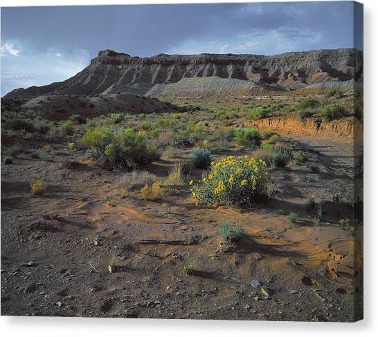 Sundowner Plateau Canvas Print