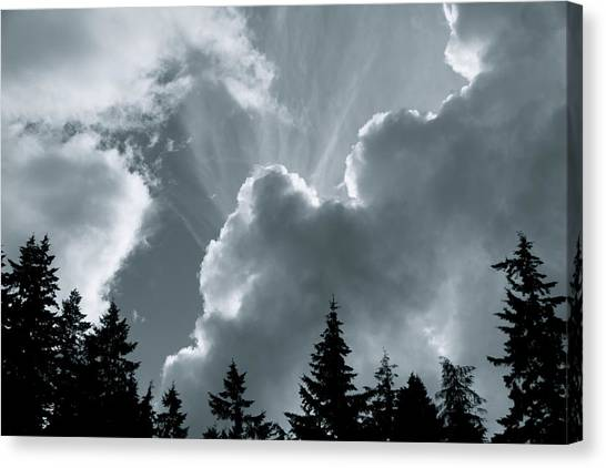 Sunflare Canvas Print by Darren Edwards