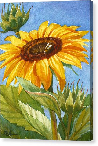 Sunflower And Honey Bee Canvas Print