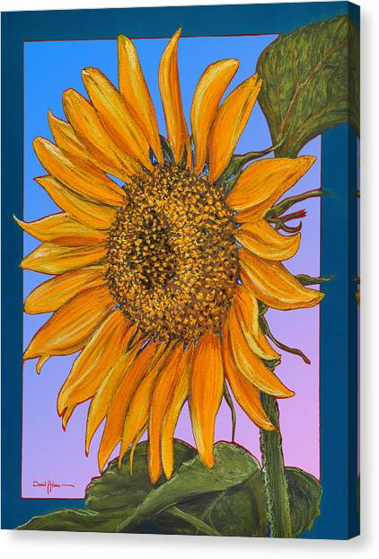 Da154 Sunflower By Daniel Adams Canvas Print