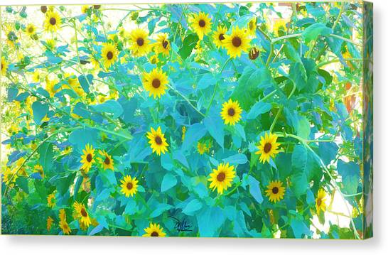 Sunflower Forest Canvas Print