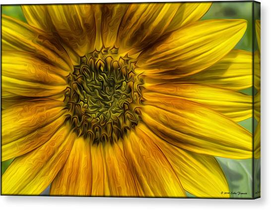Sunflower In Oil Paint Canvas Print