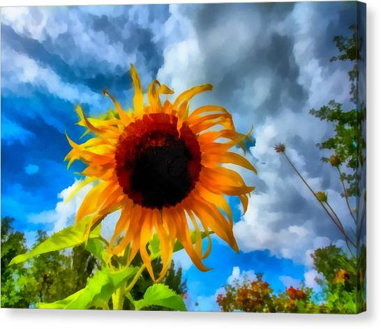 Sunflower Inspiration Canvas Print