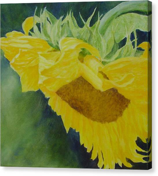 Sunflower Original Oil Painting Colorful Bright Sunflowers Art Floral Artist K. Joann Russell  Canvas Print
