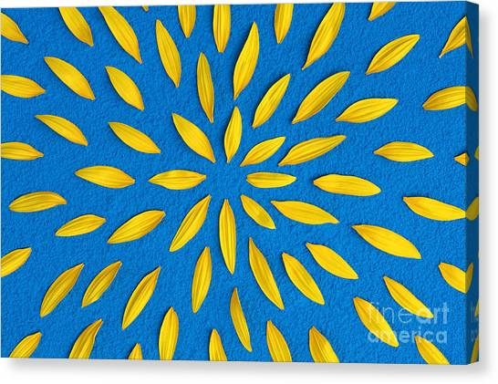 Sunflower Canvas Print - Sunflower Petals Pattern by Tim Gainey