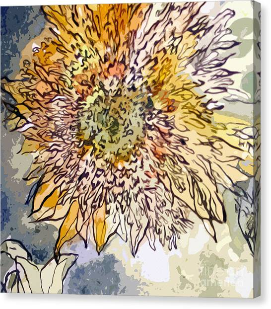 Sunflower Prickly Face Canvas Print