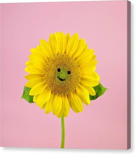 Sunflower Smiley Face Canvas Print