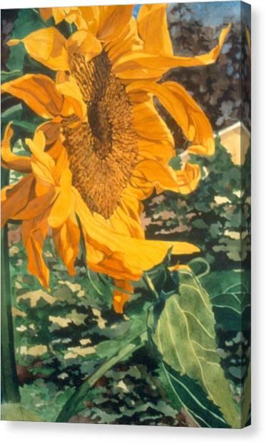 Sunflower Watercolor Painting Beautiful Flowers Sun Flower Garden Art Floral Artist K. Joann Russell Canvas Print