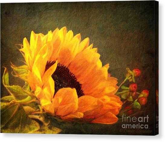 Sunflower - You Are My Sunshine Canvas Print