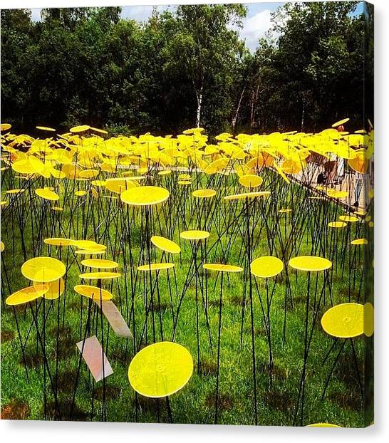 Installation Art Canvas Print - Sunflowers by Cw Lee