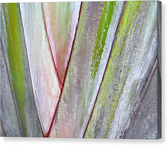 Sunken Gardens Abstract 4 Canvas Print